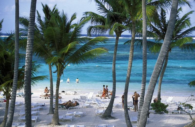 a Beach at the Village of  Bavaro in the Dominican Republic in the Caribbean Sea in Latin America. photo