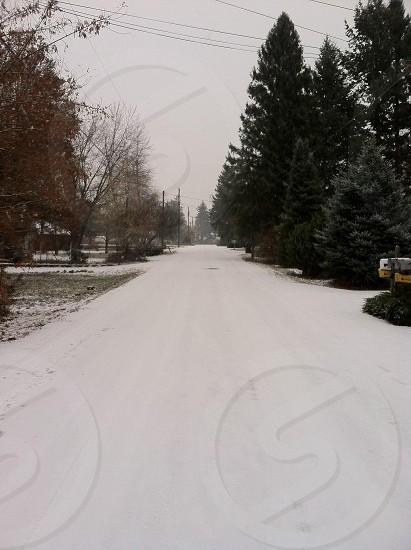 Walking home photo