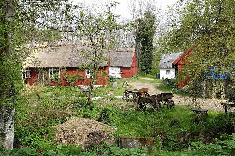 Rustic lifestyle sweden photo