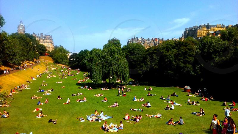 summer picnic grass park blue sky fun crowd  photo
