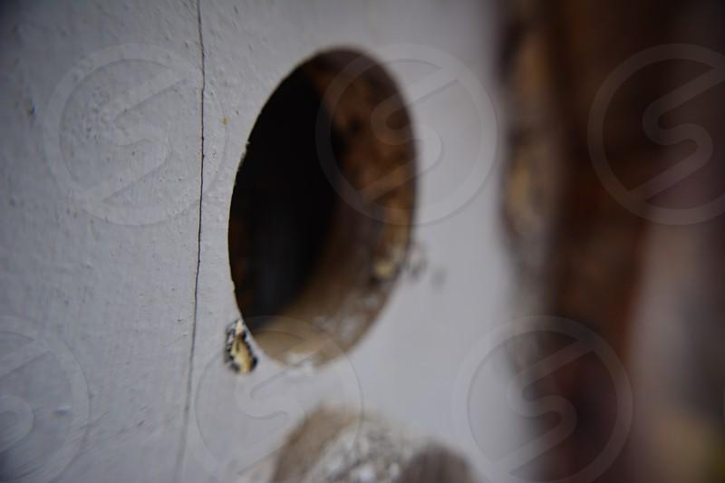 Enter the birdhouse  photo
