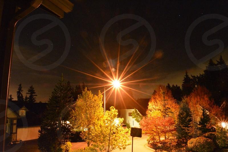 Sunny nights photo