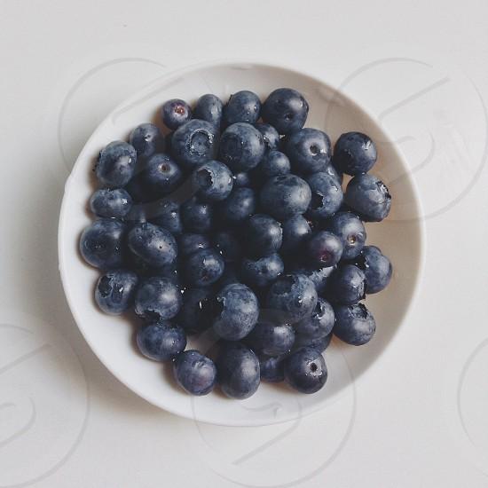 Blueberries & Sunshine photo