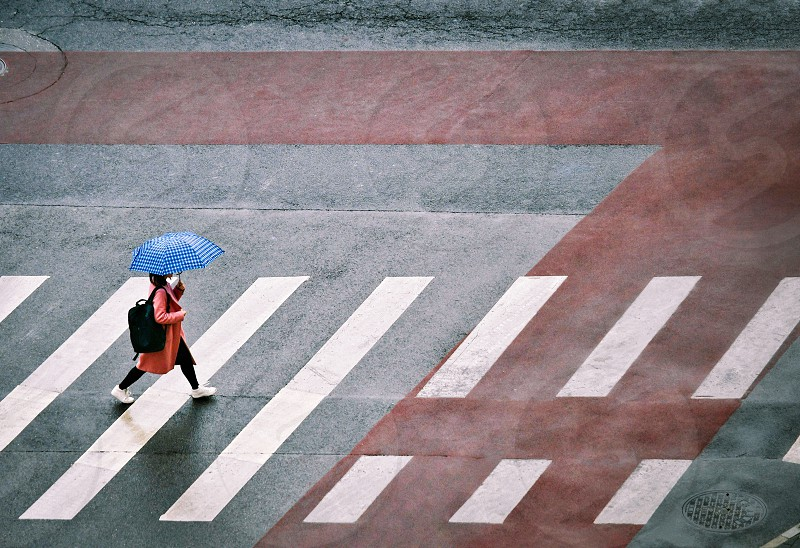 A young girl walking at a crosswalk with an umbrella photo