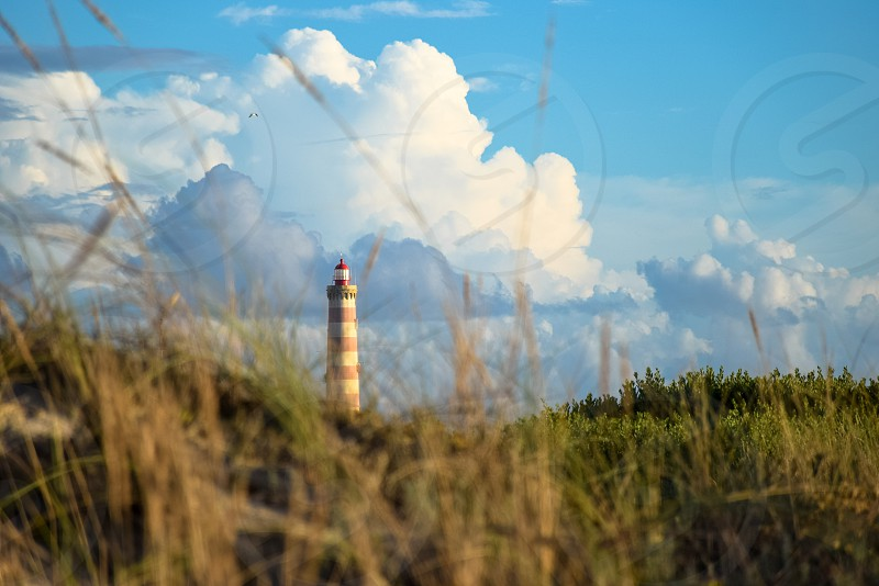 brown and white lighthouse photo