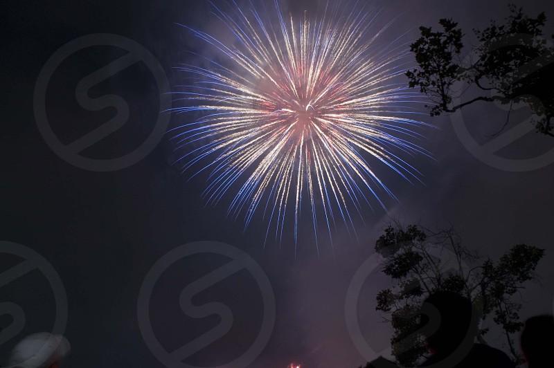 fireworks micro shot photography photo