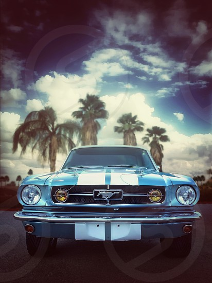 blue and white mustang photo
