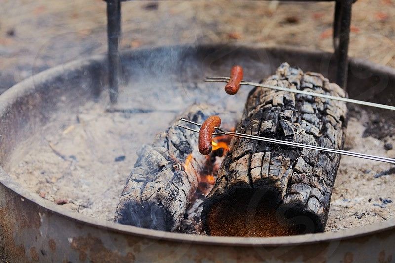 Roasting hot dogs on a campfire at Heyburn State Park campground in north Idaho. photo