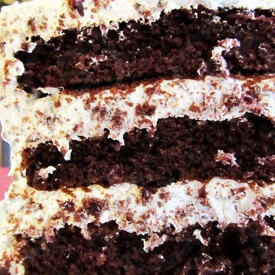 Chocolate layer cake with almond and coconut frosting photo