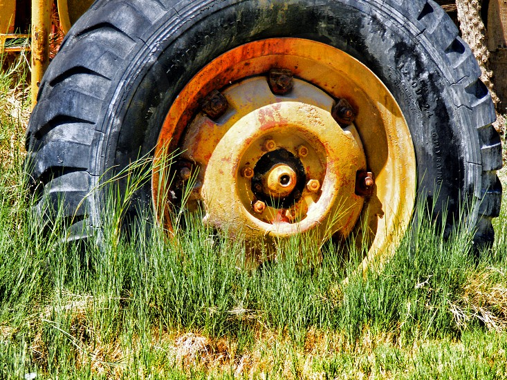 Low angle view of an old retro tractor tire in tall grass photo