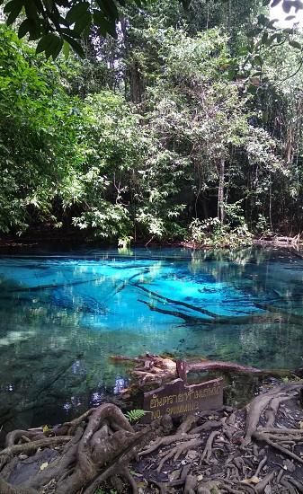 Blue Lake Krabi photo