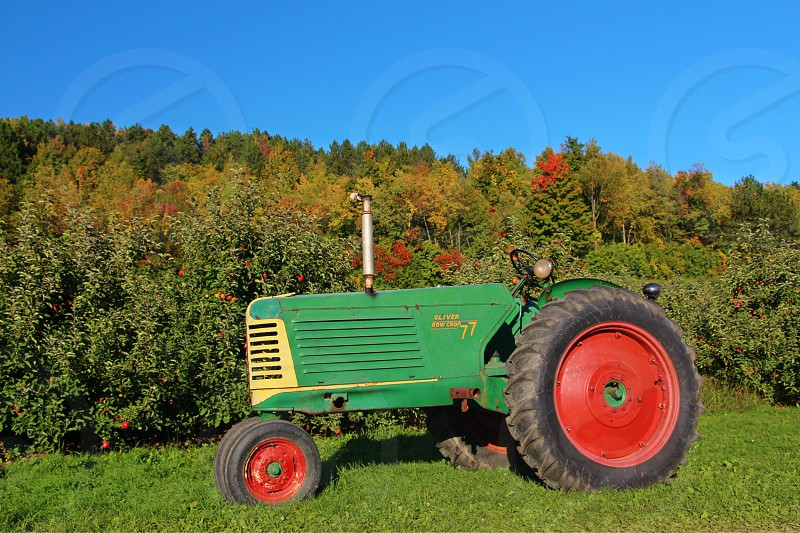 country living tractor central new york green grass red wheels green tractor apple farm photo