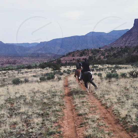 two people riding horse during daytime photo