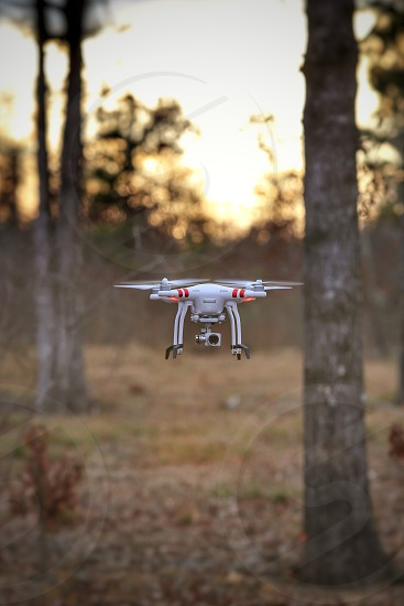 Drone action forest trees sunset flight object  photo