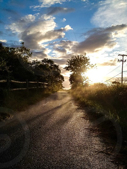 Road to the beach in Nantucket. photo