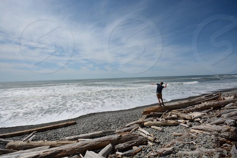 man standing on brown logs on seashore during daytime photo
