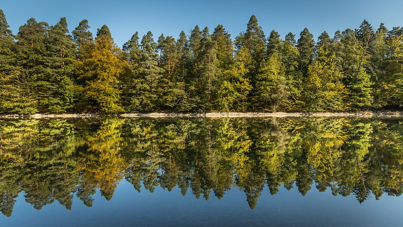 Reflection of trees starting to color in autumn around the Bärenschlössle (bear palace) in Stuttgart Germany photo