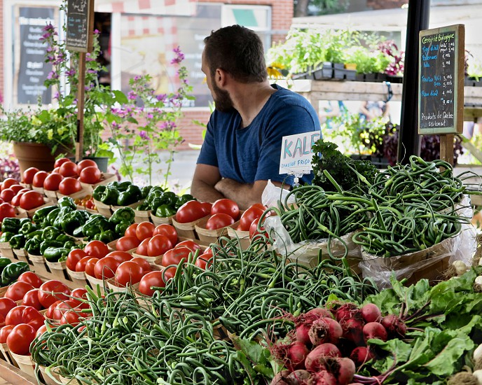 man wearing blue crew neck shirt selling red tomatoes green string beans purple onions and green lettuce in a dry market during daylight photo