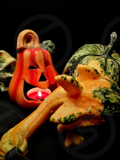 halloween time photo