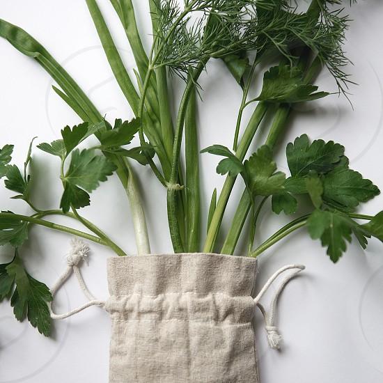 Beautiful flatlay of greenhouse products isolated on white background photo