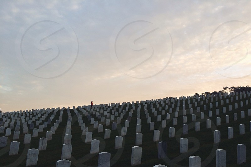 cemetery with uniform tombstones photo