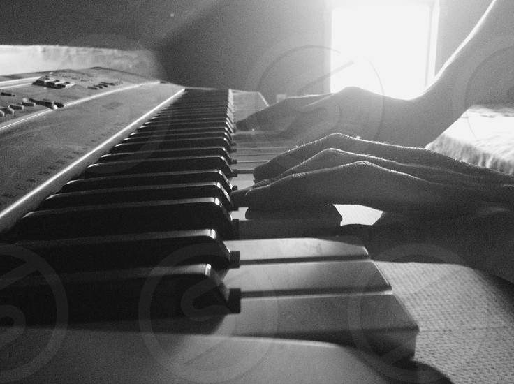 person playing electric piano photo