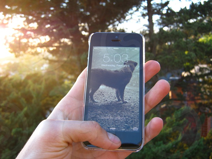 Holding iPhone 5S with thumb on the button and sunset in the background photo