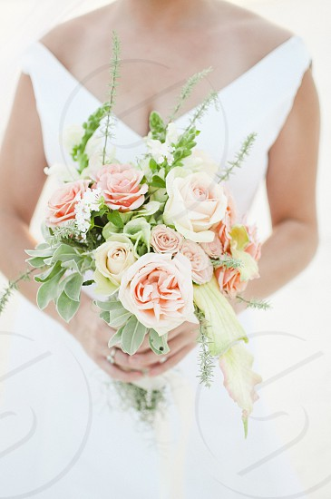 white and beige roses round bouquet held by a woman photo