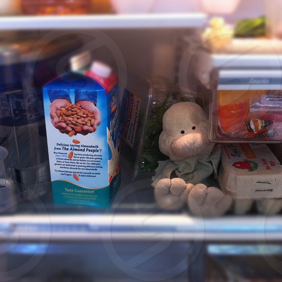brown monster plushie in a refrigerator photo