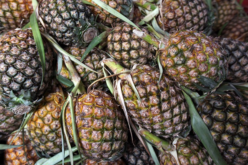 Pine apple fruits at the market in the city of Amnat Charoen in the Region of Isan in Northeast Thailand in Thailand.