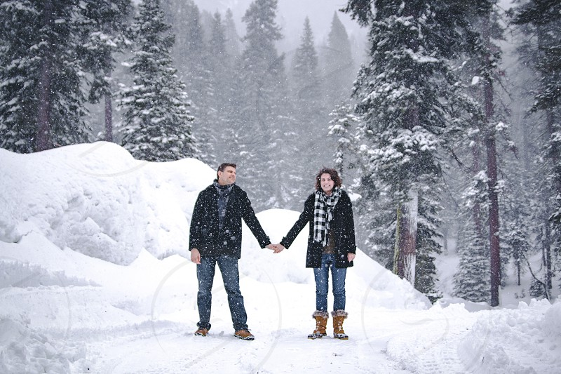 couple holding their hands in the middle of forest during snoy photo