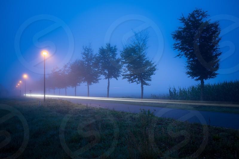 Morning Rush photo