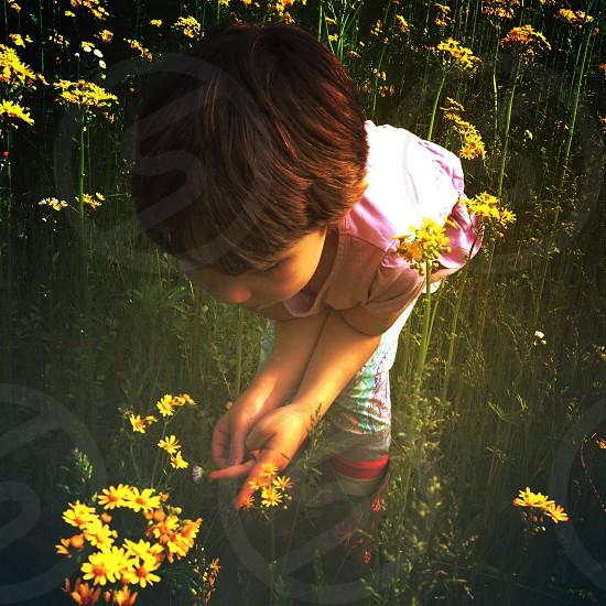 girl in pink shirt near yellow flowers photo