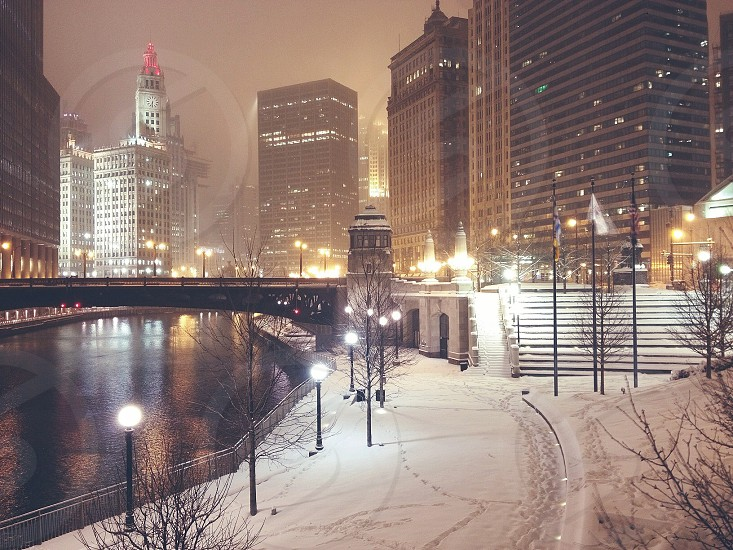 Snowy Chicago. photo