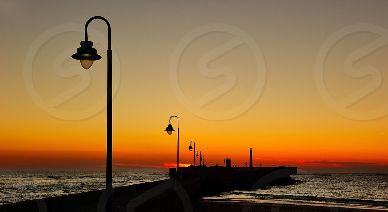 fares silouettes in a sunset  photo