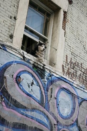 Graffiti grunge photo