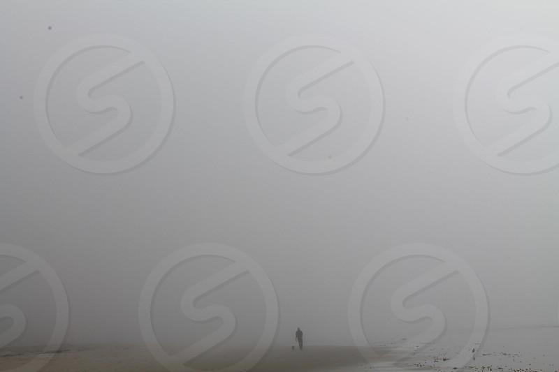 Alone in the Fog photo