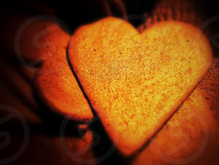 brown heart shaped bread photo