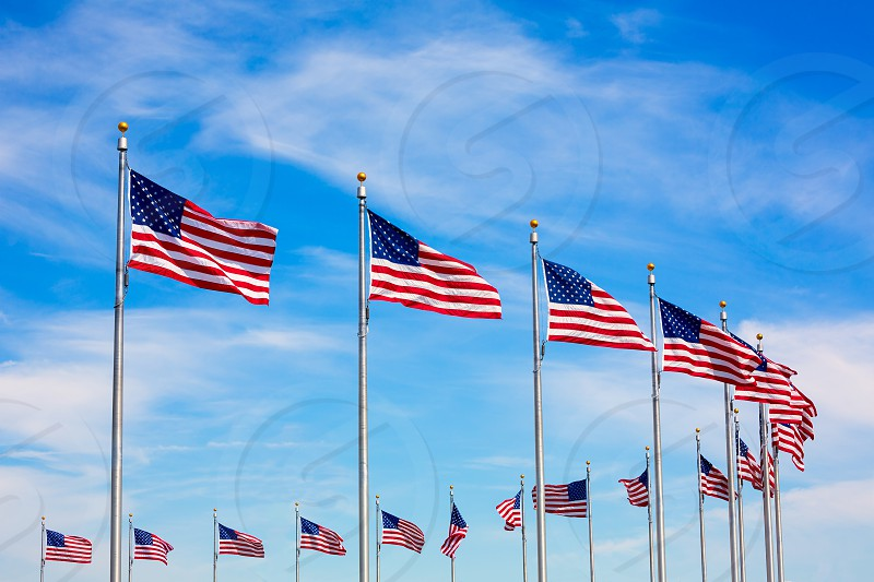 Washington Monument flags circle in DC United States USA photo