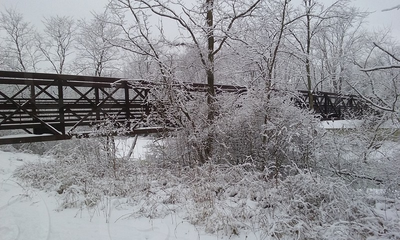 Snowy Coverd Bridge (North America) photo