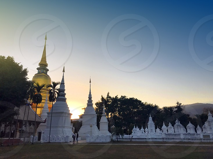 Golden pagoda at Wat Suan Dok a Buddhist temple in Chiang Mai Thailand photo