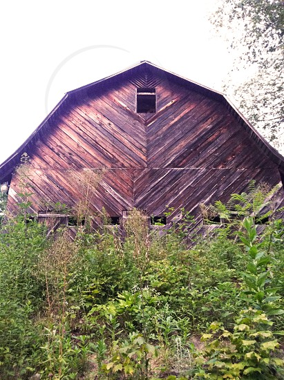 brown wooden barn photo