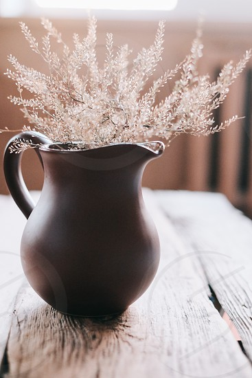 Beautiful pitcher with flower photo