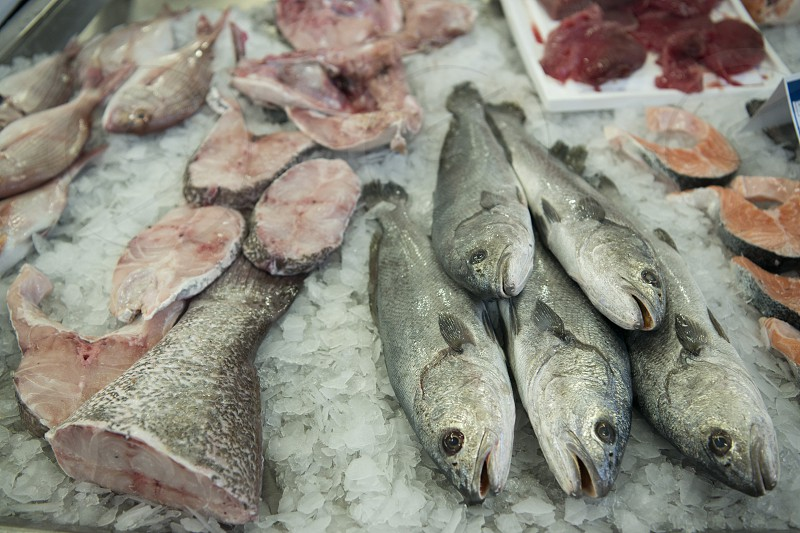 the fish Market in the Market Hall  the Old Town of Olhao at the east Algarve in the south of Portugal in Europe. photo