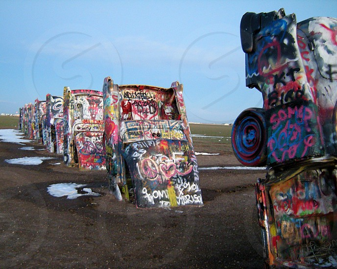 Spray painted cars in cow field photo