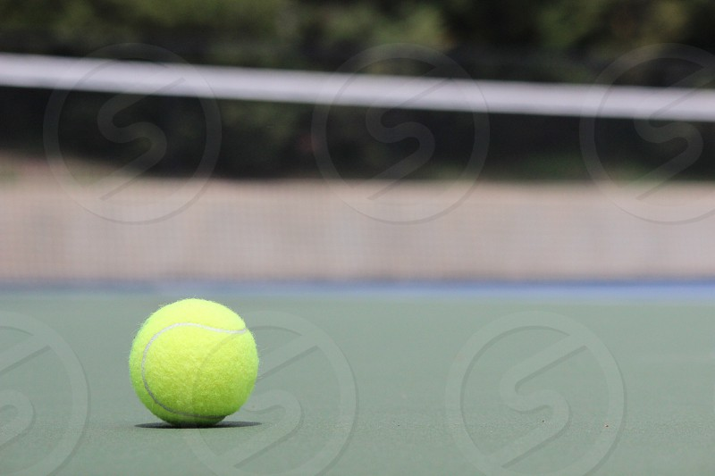 yellow tennis ball photo