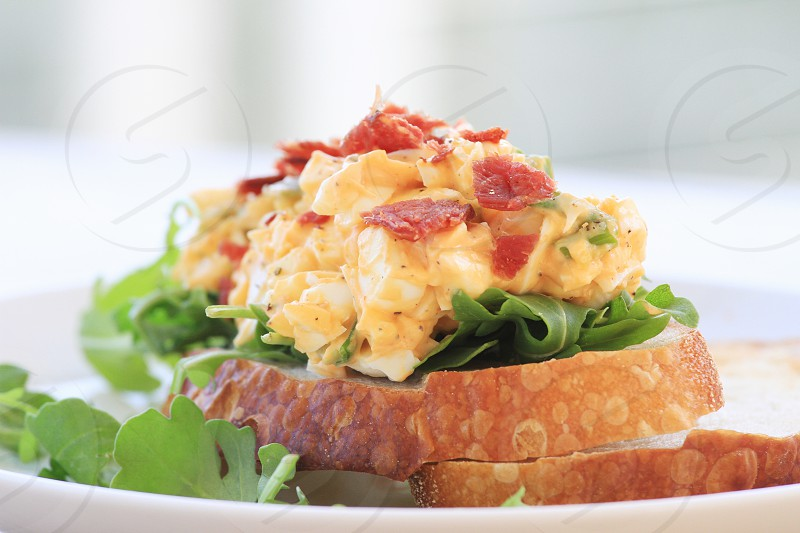 bread with egg salads photo