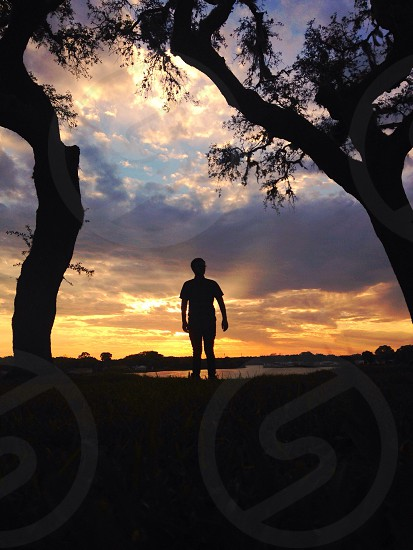 man standing between trees in the sunset photo