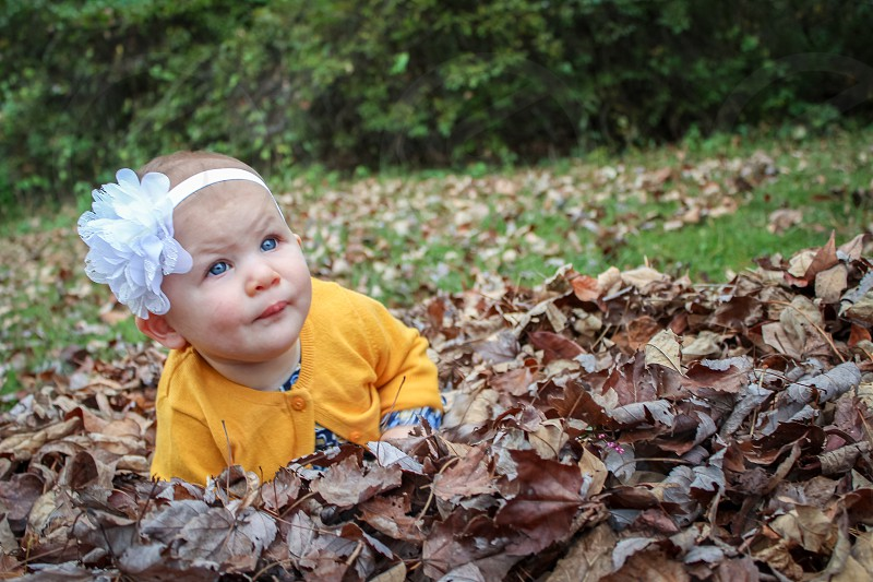 Baby Girl Playing in Fall Leaves photo