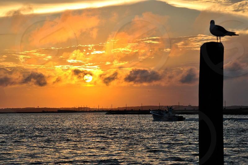 Beautiful sunset on Chincoteague Bay VA. photo